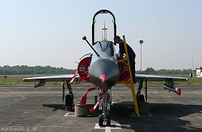 Cope India 2006 - USAF and IAF Excercise