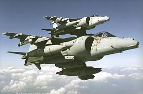 British Harrier - Royal Air Force