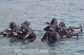Mexican Navy Special Operations Force