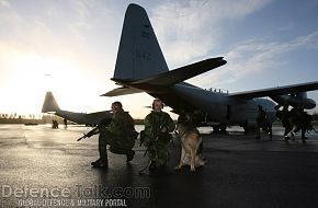 Two C-130s - Swedish Air Force, Nordex 2006
