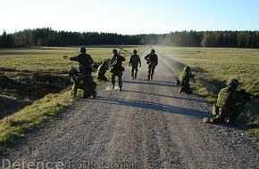 Swedish National Home Guard