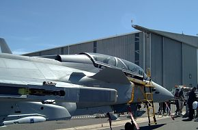 SAAF Gripen at Africa Aerospace and Defence 2006