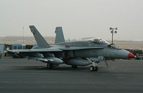 Hornets in Middle East