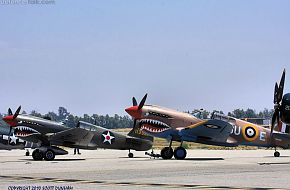 US Army Air Corps and RAF P-40 Warhawk Fighter