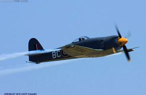 RN Sea Fury Fighter