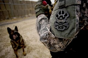US Army Military Working Dog Handler