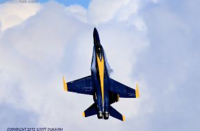 US Navy Blue Angels - F/A-18 Hornet Fighter