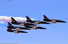 Patriots Flight Demonstration Team L-39 Albatros