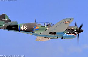 ROC Flying Tigers P-40 Warhawk Fighter