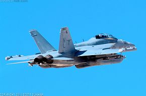 US Navy EA-18G Growler Electronic Attack Aircraft