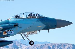 USAF F-15D Eagle Aggressor Fighter