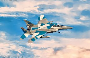 USAF F-15C Eagle Aggressor Air Superiority Fighter Aircraft