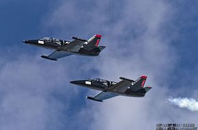 Patriots Flight Demonstration Team L-39 Albatross Jet Trainer