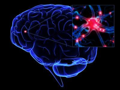 DOD partners to combat brain injury