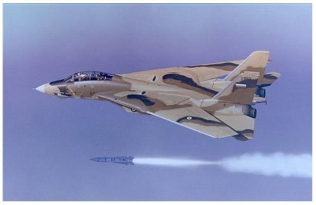 Iran F 14 Phoenix Missile