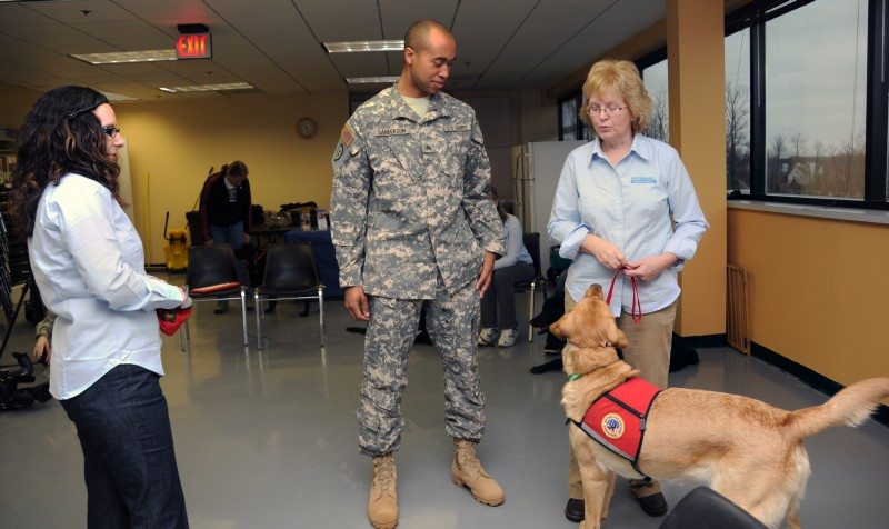 Therapy dogs helping with more than PT...