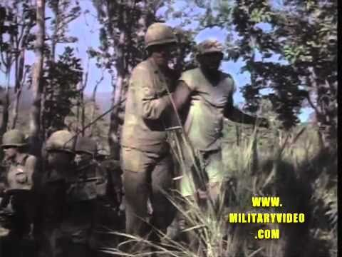Ia Drang Valley, 1st Cavalry Division (Air Mobile) Veitnam War, 1965, Army