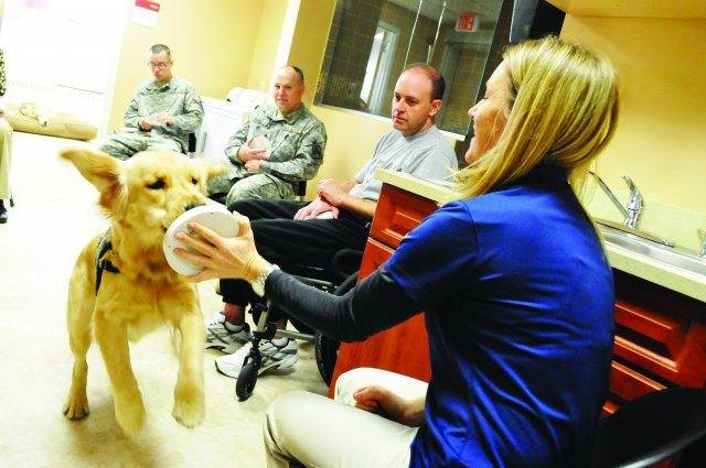 Man's best friend training to help veterans